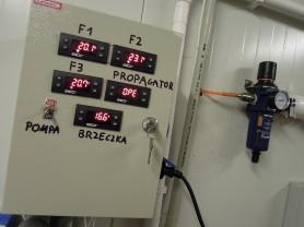 Temperatura fermentacji - powyżej 20°C