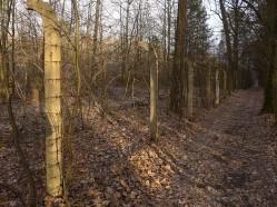 Oryginalne ogrodzenie obozu