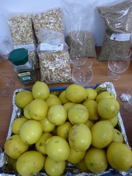 Cytryny gotowe do obrania